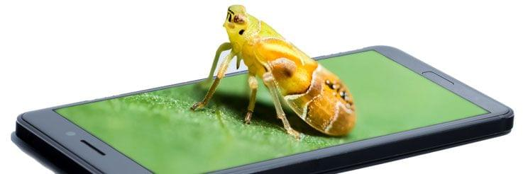 How to bug a mobile phone